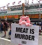 خوک و گوسالهء پتا وارد مسابقهء هات داگ خوری شدند !
