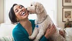 چند تمرین که در خانه می توانید با انواع نژاد سگ خانگی انجام دهید!