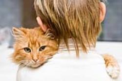نگهداری از گربه برای اولین بار؛ هر آنچه لازم است بدانید!