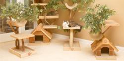 طرح هایی بسیار زیبا برای گربه ها