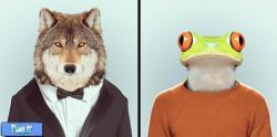 طرح های بامزه از حیوانات با لباس