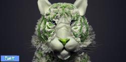 حیوانات ساخته شده با گل