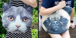 چهره های دوست داشتنی حیوانات